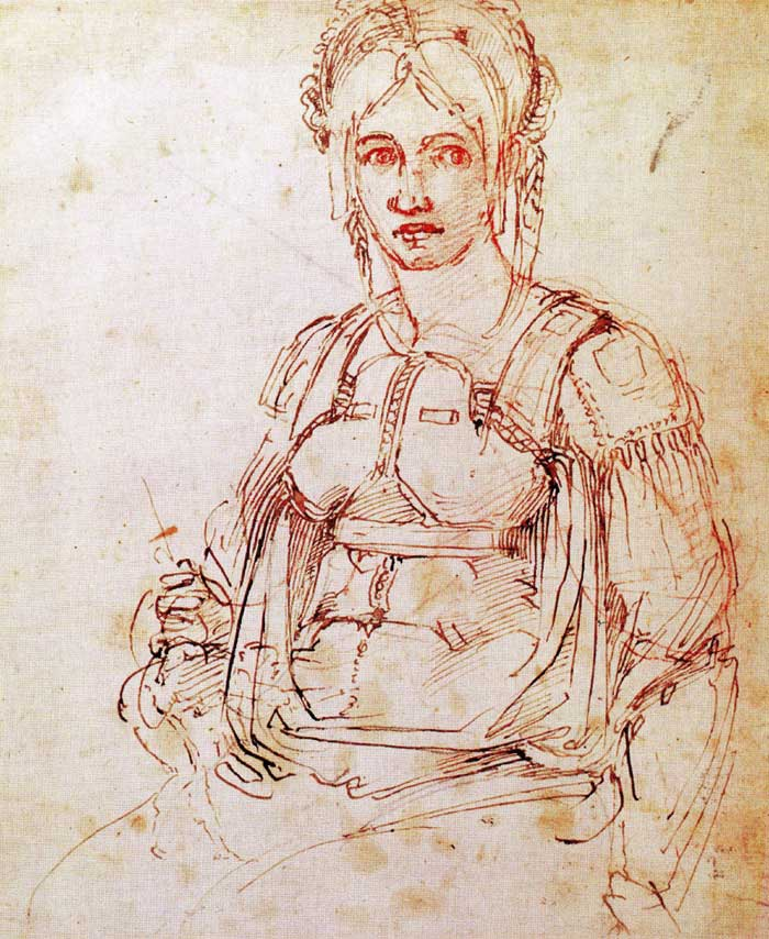 Study of a seated woman, Michelangelo.