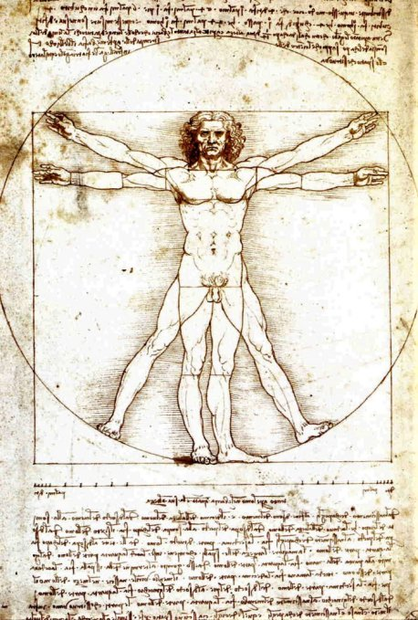 Leonardo da Vinci's iconic drawing the Vitruvian Man.