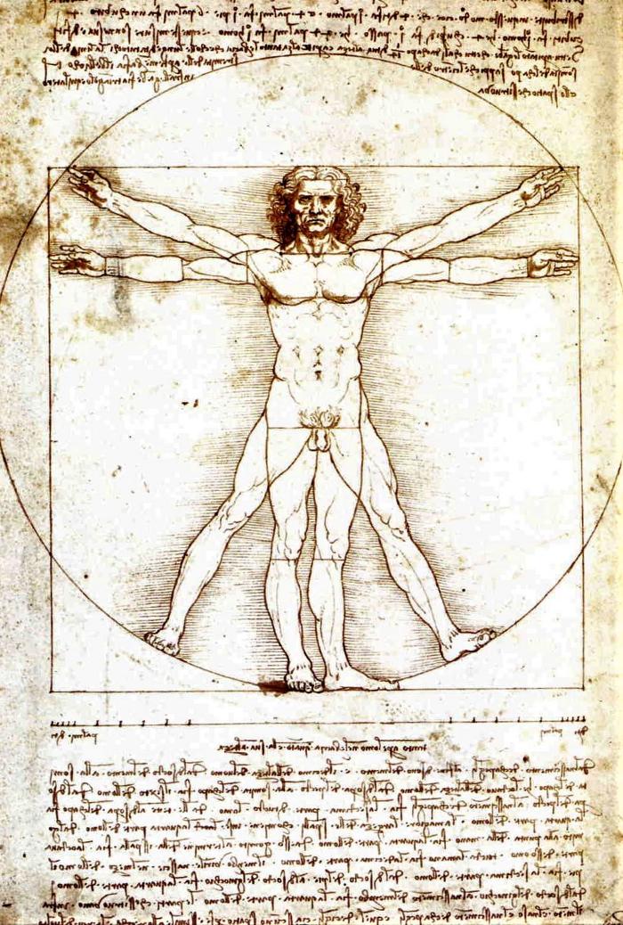 Leonardo da Vinci's iconic drawing the Vitruvian Man.