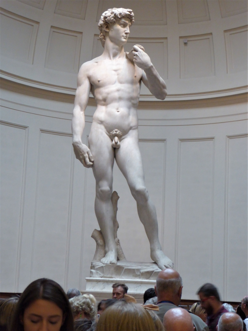 Michelangelo's statue of David at the Accademia Gallery, Florence, Italy