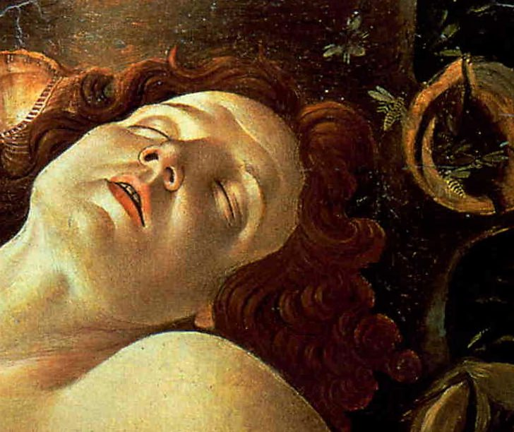 A wasp nest above the head of Mars, detail from Botticelli's Venus and Mars.