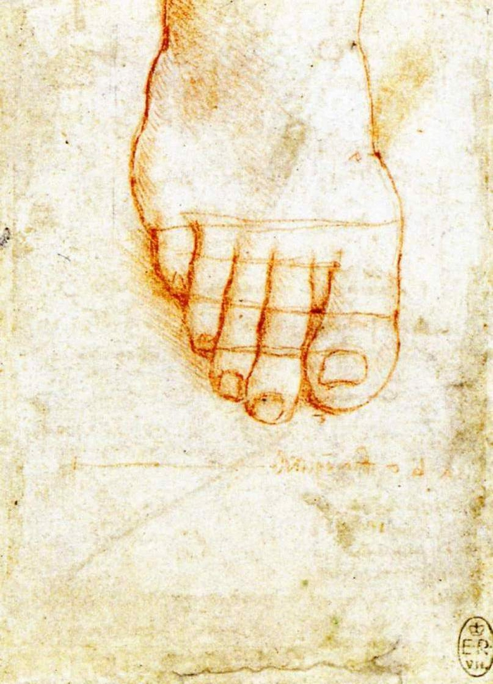 Study of Christ's foot by Leonardo da Vinci.