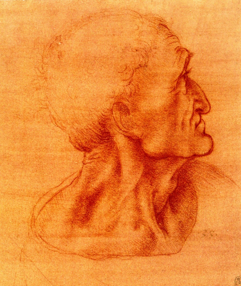 Study for Judas by Leonardo da Vinci.