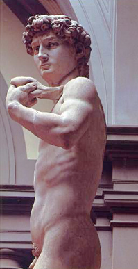 Side view of Michelangelo's David