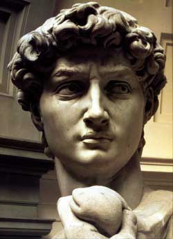 Head of David by Michelangelo