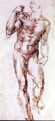 Study for David Michelangelo